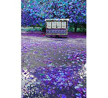 PURPLE TOUCH Photographic Print