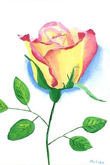A Single Rose by Rodney Campbell