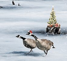 Christmas Geese by Gracey