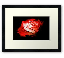 Rose On Fire Framed Print