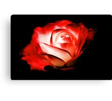 Rose On Fire Canvas Print