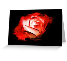 Rose On Fire Greeting Card