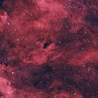 Barnard 343 - Dark Nebula in Cygnus by Jeff Johnson