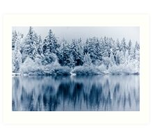 Vancouver - reflection on lost lagoon (winter) Art Print