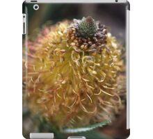 Banksia Flower iPad Case/Skin