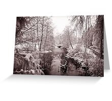 Vancouver - lost lagoon (winter) Greeting Card