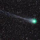 Comet C/2014 Q2 (Lovejoy) by Jeff Johnson