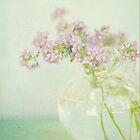 Vintage Violet by shanarae