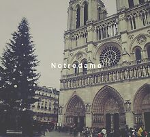 Paris Notre Dame by ButterClothing