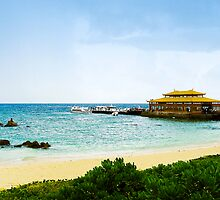 A Dock of Hainan Island by Victor He