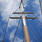 mast by JenniferJW