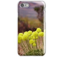 Wild flowers of Northern Nevada iPhone Case/Skin
