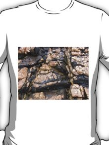 Rock Art, Sulphur Rocks, Northern Tasmania, Australia. T-Shirt