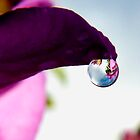 single drop of water by tego53