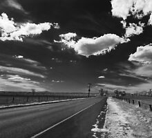 The road home by David  Hibberd