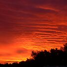 Byron sunset by PhotosByG