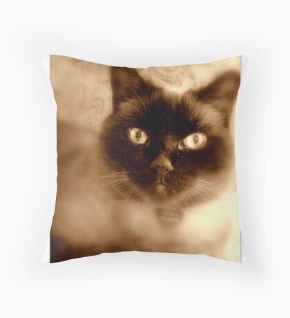 Buford Throw Pillow