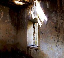 Shaft of light by michelleduerden