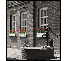 flowers in the window Photographic Print
