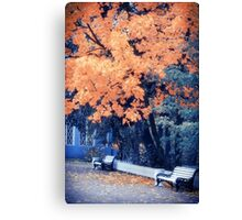 Autumn Park Canvas Print