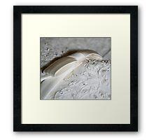 bridal bow Framed Print