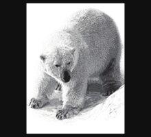 Polar bear by lvinst