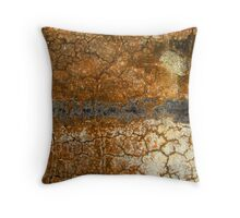 Erosion of the Soul Throw Pillow