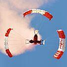 Sky Hawks by Debbie Stobbart