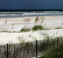 Ocean scene. by Tony Weatherman