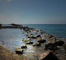 ON THE ROCKS by leonie7