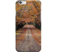 Autumn Laneway iPhone Case/Skin