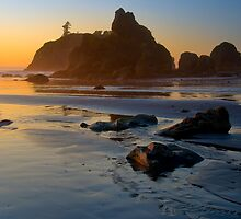 Ruby Beach by Leroy Laverman