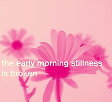 The early mornings stillness is broken by Andreas Bengter