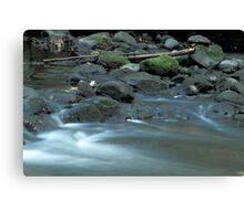 Water, Stones & Moss Canvas Print