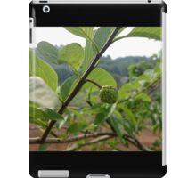 The Fruit iPad Case/Skin