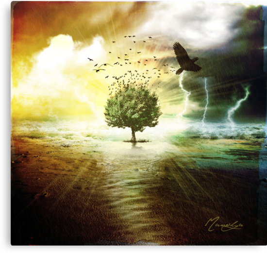 Tree Of Life by Manolya  F.
