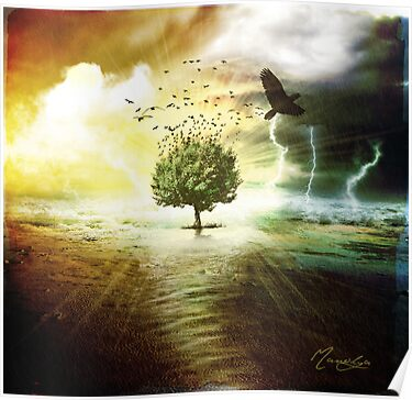 Tree Of Life by Manolya  F.