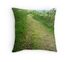 To Backcountry and Beyond Throw Pillow