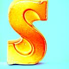 """""""S"""" by Hilary Walker"""