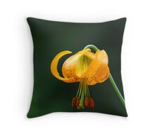 Solus Throw Pillow