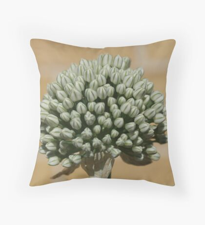 What Am I? Onion Going To Seed Throw Pillow