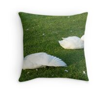 liking the feathers dude Throw Pillow