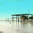 Cairns Esplanade Lagoon - Queensland Icon by Caroline Angell