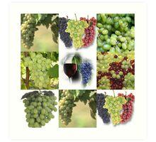 Just Grapes Art Print