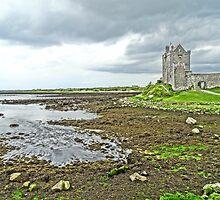 Dunguaire Castle by DES PALMER