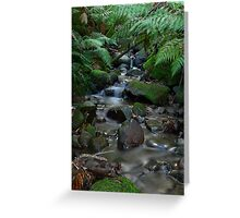 Myrtle Gully Greeting Card