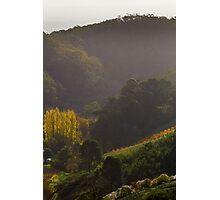 Autumn Hills Photographic Print