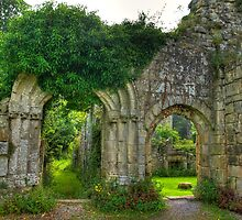 Ruined Doorway by Trevor Kersley