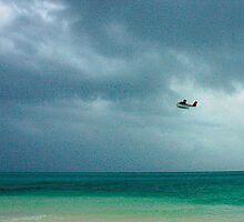 Flying Away by Denis Molodkin