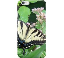 Canadian Tiger Swallowtail Butterfly iPhone Case/Skin